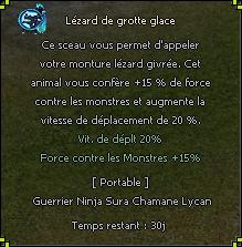 lezard%20de%20glace1.2-ac8d47.png
